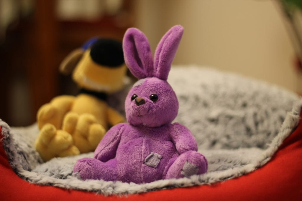 Plush bunny, Reminder